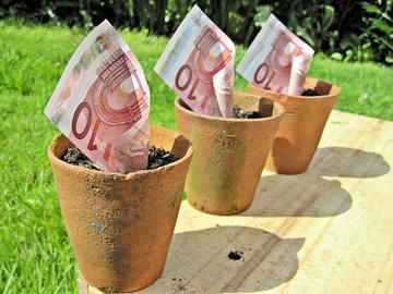 Money in a plant pot, foto di Images of money - www.flickr.com