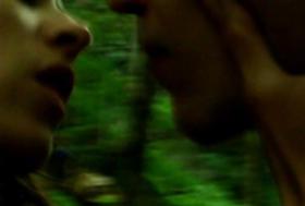 """Mesa sto dasos - In the Woods"" di Angelos Frantzis"