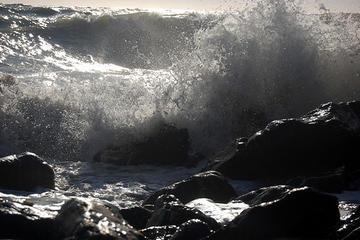 Tempesta marina