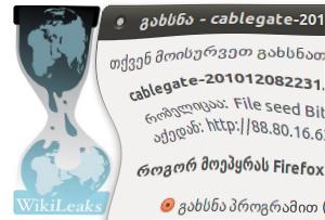 Wikilieaks Georgia