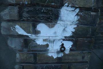 murales con disegno di colomba